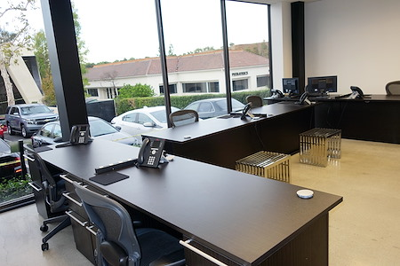 Wembley's Inc - Large Dedicated Desk