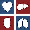 Host at Organ Preservation Alliance Cowork