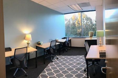 Pleasanton Corporate Commons - Open Desk 1