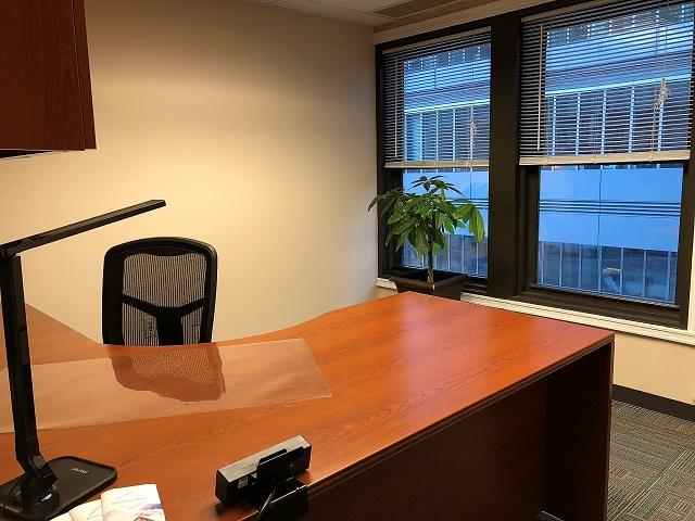 BusinessWise (Law & Finance Building) - Day Pass: Suite 300B-Private Office