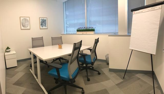 Office Evolution- Vienna - Blue Room Conference Space
