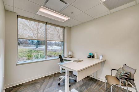 Office Evolution - Johns Creek - Office 110