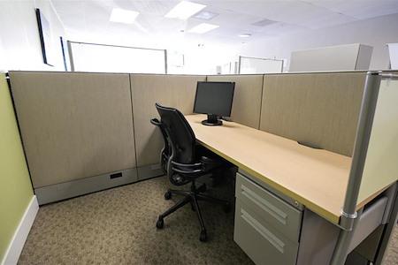 Satellite Workplaces Felton - Daily/Hourly Workstation #4