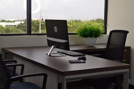 Cosuite - Window View Executive Suite