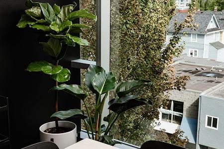 Pavilion Cowork - Window Modern Boardroom