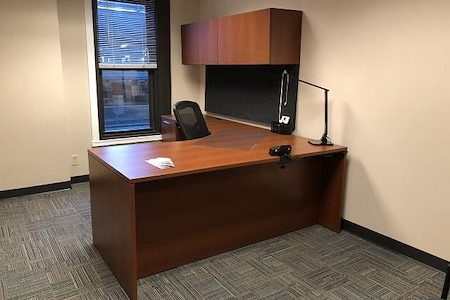 BusinessWise (Law & Finance Building) - Day Pass: Suite 300G-Private Office