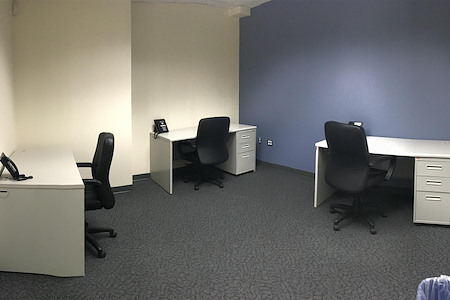 Secure Offices - Secure Offices Dedicated Desk Office 311