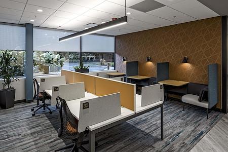 Hone Coworks - Dedicated Desks