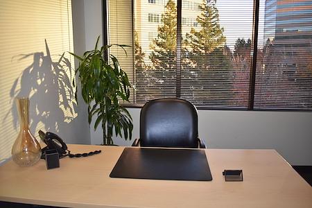 Intelligent Office - Walnut Creek - Premium Office 2