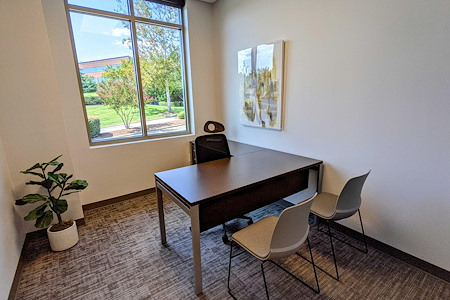 Towerview Office Suites - Office 101