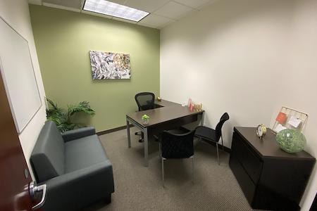 Regus   The Plaza Los Angeles - Office 52