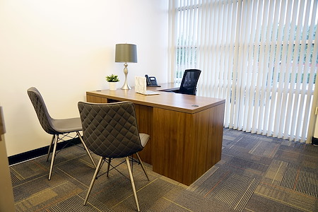 Executive Workspace @ Park Ventura - Private Office
