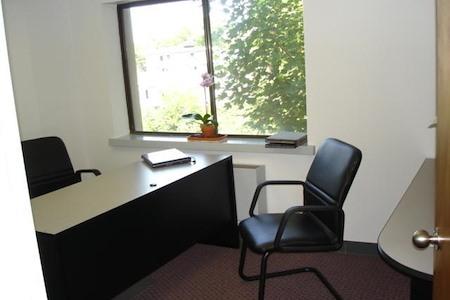 Union Park - Desk 3