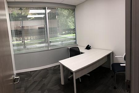 Office Evolution Fairfax - Office 102