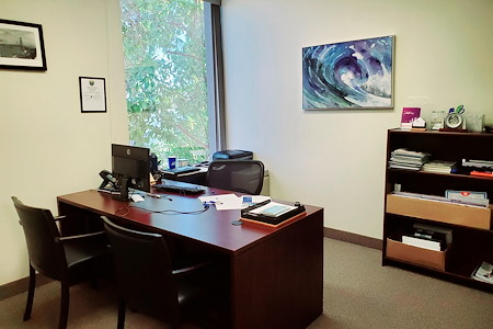 Professional private offices available in Aliso Viejo - Private Office (views of Saddleback Mt)