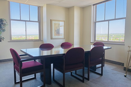 Palace Business Centres - Large Meeting Room