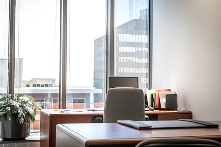 IDS Executive Suites - JULY  2021 Private Office Day Pass***