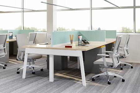 HAYVN Coworking - Dedicated Desk for 1