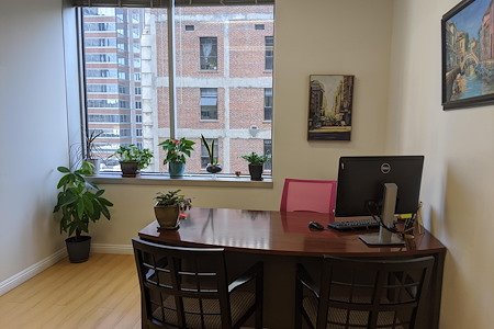 Sandra Nelson's - Two furnished offices, one with view