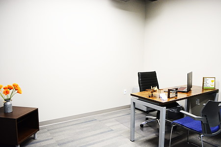 Business E Suites - Interior Private Office