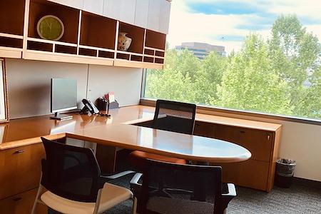 Pioneer Office Suites, LLC - Day Office #3
