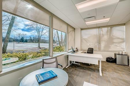 Office Evolution - Johns Creek - Office 106