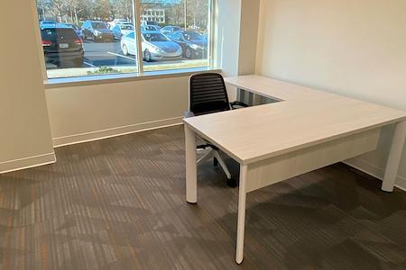 Office Evolution - Johns Creek - Office 102