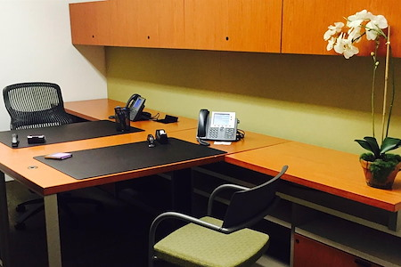 Carr Workplaces - Tysons - Leesburg Day Office