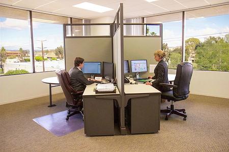Successful Solutions - Dedicated Desk 1