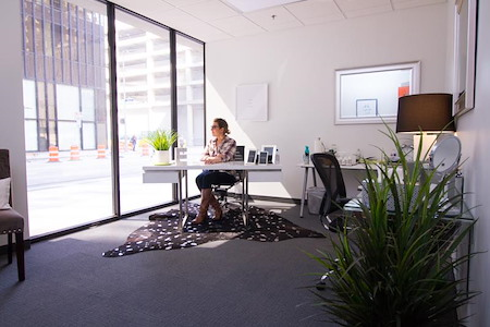 Expansive - Theater District - Shared Office 103