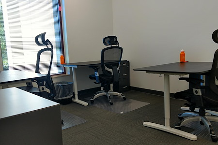3LS WorkSpaces @ Conference Drive - Office 9