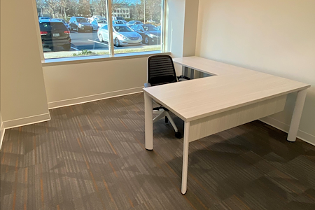 Office Evolution - Johns Creek - Office 101