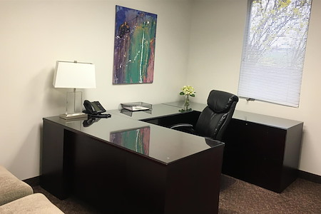 First Choice Executive Suites - Day Office #206