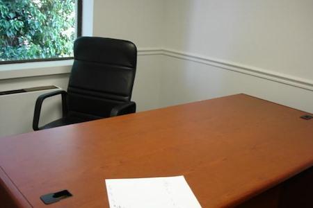Union Park - Desk 1