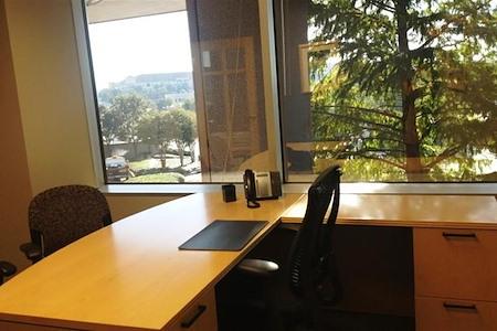 Intelligent Office Dallas (Las Colinas) - Executive Office 1