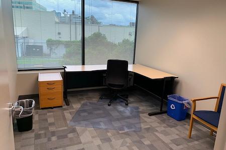 Elevative - Office 1