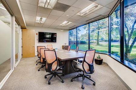Office Evolution - Lisle - Large conference room