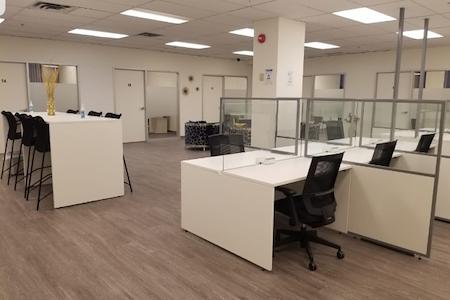 BriteSpace Offices - Open Desk 1