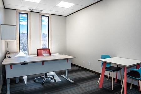 Mogwai Collaborative - Private Office