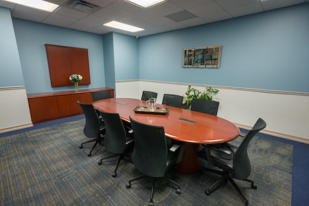 TOTUS Business Center Long Island - Melville, NY - Birch Meeting Room