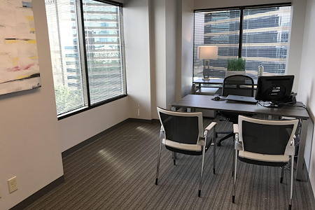 Peachtree Offices at Lenox, Inc. - Window Office