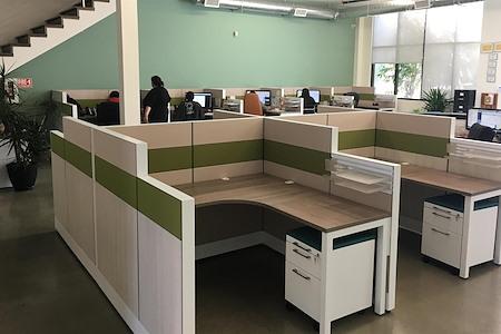 Alfi Trade Inc. - Well-lit open work space (desk 12)