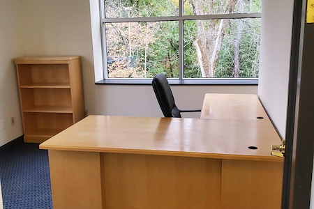 gSPACE | Putnam Avenue Offices - Private Office for 1