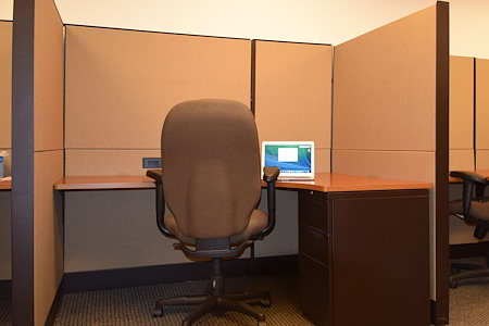 R.K. Black Office - Open Desk 5
