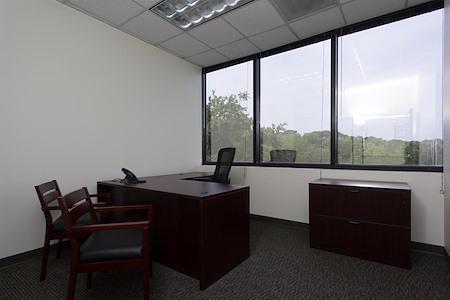 Executive Center Suites - Office Suite