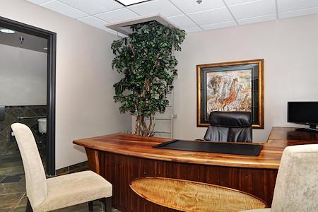 Irvine Spectrum Productivity Suites - 200E - Executive Office Suite