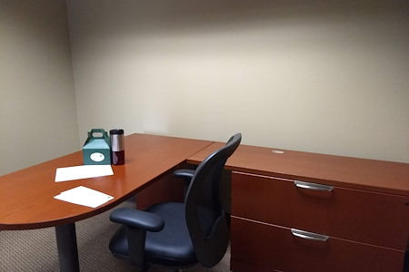 TKO Suites - 300 Delaware - Private Office