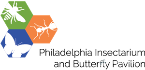 Logo of Philadelphia Insectarium and Butterfly Pavilion