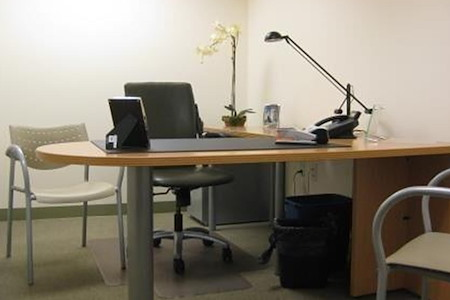 Carr Workplaces - Financial District - Private Office 842
