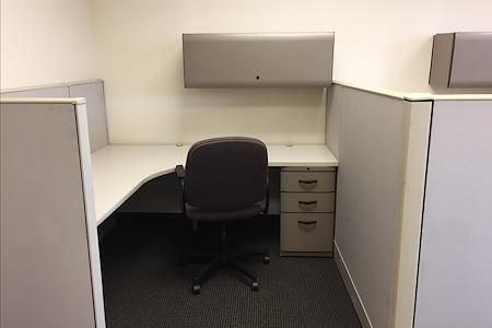 Pearl Street Business Center in Metuchen, NJ - Suite 216 - Team Office